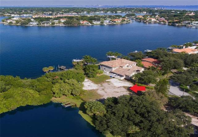 990 Bayview Place NE, St Petersburg, FL 33704 (MLS #U8067062) :: Team Bohannon Keller Williams, Tampa Properties