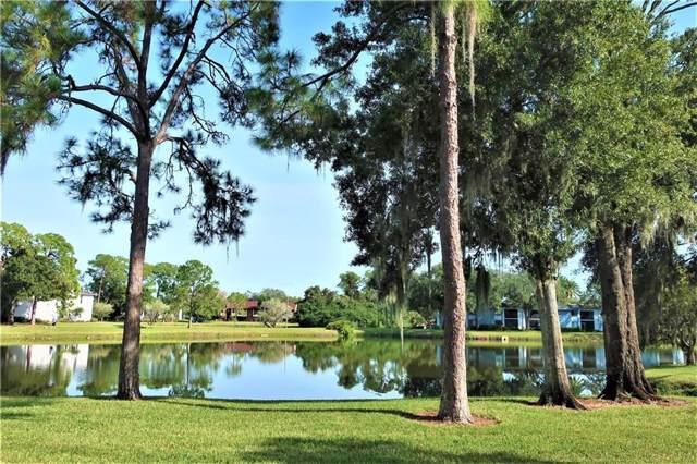 169 Lakeview Way #5, Oldsmar, FL 34677 (MLS #U8067143) :: The Duncan Duo Team