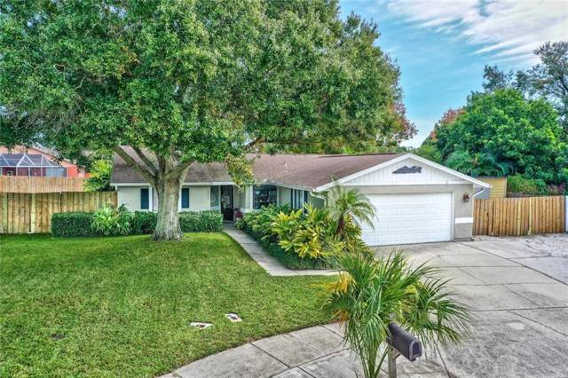 1388 Tenby Way, Palm Harbor, FL 34683 (MLS #U8067508) :: Bridge Realty Group