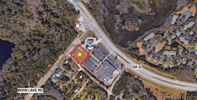 12140 Moon Lake Road, New Port Richey, FL 34654 (MLS #U8067560) :: The Duncan Duo Team