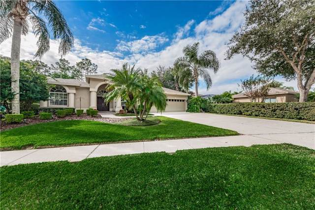 Address Not Published, Palm Harbor, FL 34685 (MLS #U8067624) :: The Duncan Duo Team