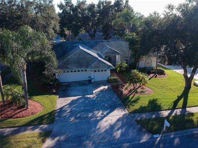 2148 Colusa Court, Palm Harbor, FL 34683 (MLS #U8067683) :: Burwell Real Estate