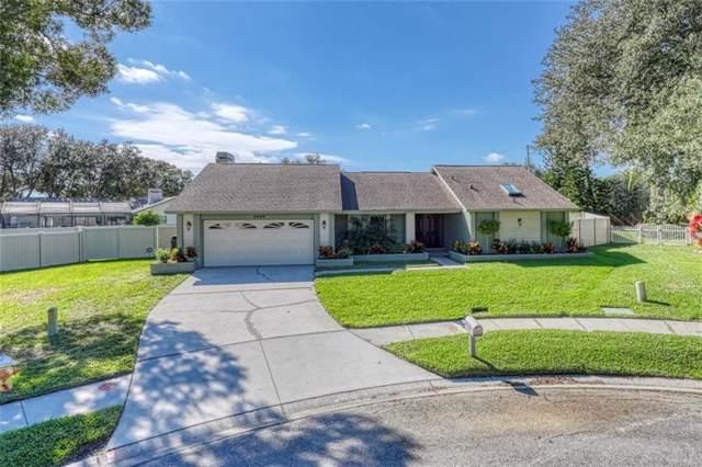 2805 Luce Drive S, Clearwater, FL 33761 (MLS #U8067695) :: Team Bohannon Keller Williams, Tampa Properties