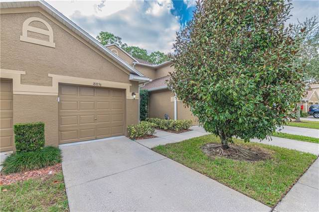 18856 Duquesne Drive, Tampa, FL 33647 (MLS #U8067714) :: The Duncan Duo Team