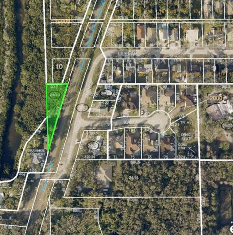 Moss Rose Avenue, Palm Harbor, FL 34683 (MLS #U8067760) :: Bridge Realty Group