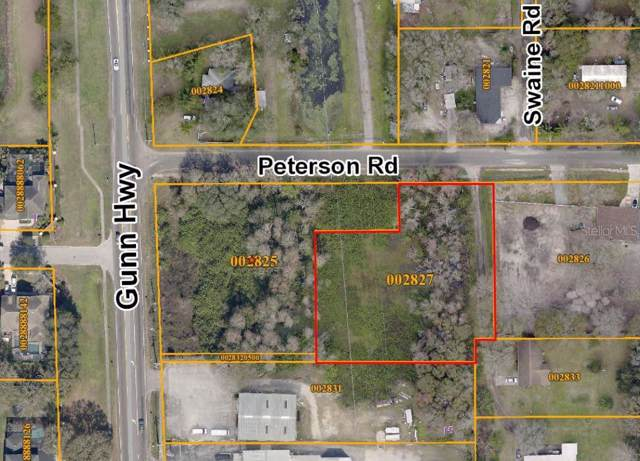 Peterson Rd, Odessa, FL 33556 (MLS #U8067803) :: Team Bohannon Keller Williams, Tampa Properties