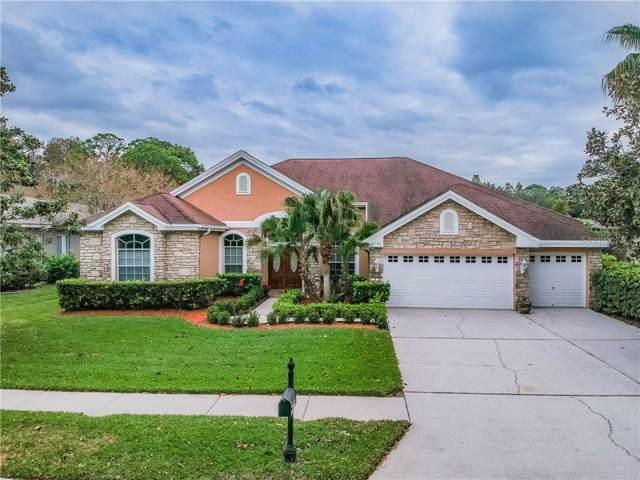 4036 Ligustrum Drive, Palm Harbor, FL 34685 (MLS #U8067872) :: Bridge Realty Group