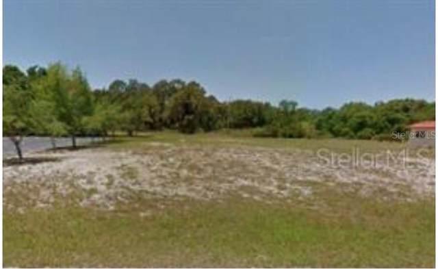 97 Boundary Boulevard, Rotonda West, FL 33947 (MLS #U8068004) :: Medway Realty