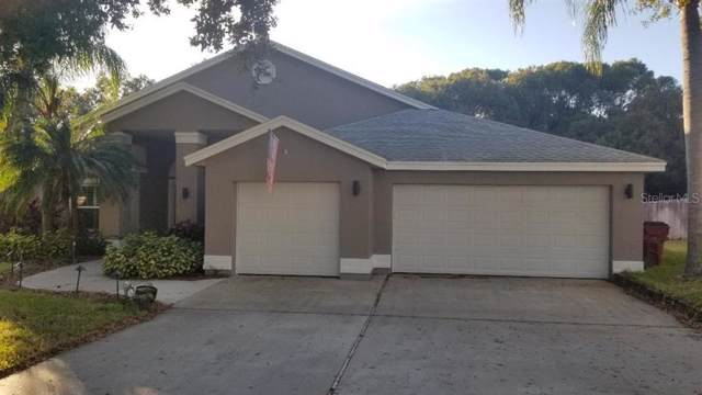 650 Belted Kingfisher Drive N, Palm Harbor, FL 34683 (MLS #U8068014) :: The Duncan Duo Team