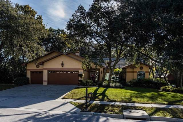 4589 Glenbrook Circle, Palm Harbor, FL 34683 (MLS #U8068019) :: Cartwright Realty