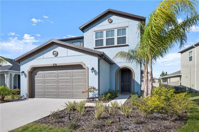 4537 Tramanto Lane, Wesley Chapel, FL 33543 (MLS #U8068192) :: Zarghami Group
