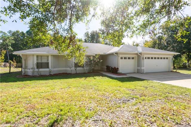 15928 Phillips Road, Odessa, FL 33556 (MLS #U8068193) :: The Duncan Duo Team