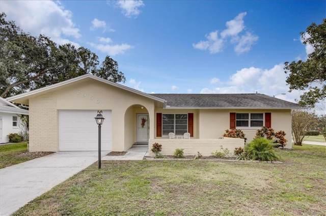 2950 Dundee Drive, Palm Harbor, FL 34684 (MLS #U8068238) :: Team Bohannon Keller Williams, Tampa Properties