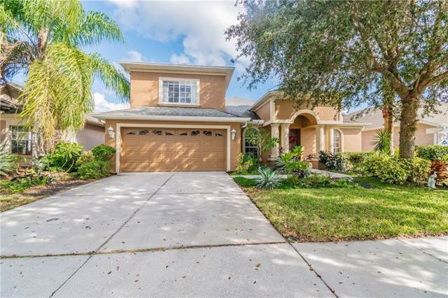 10706 Ribbon Fern Way, Land O Lakes, FL 34638 (MLS #U8068327) :: The Duncan Duo Team