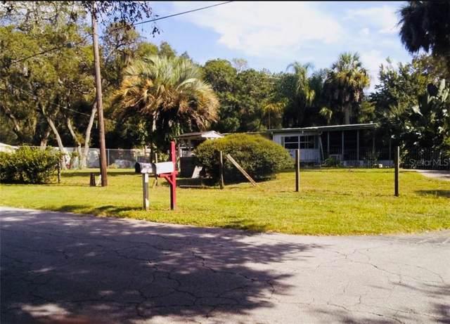 9116 Peony Street, New Port Richey, FL 34654 (MLS #U8068415) :: Griffin Group