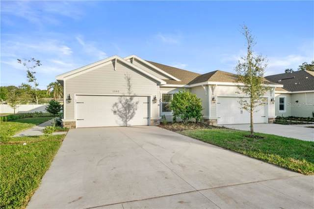 1515 Highland Park Drive, Largo, FL 33770 (MLS #U8068696) :: Zarghami Group