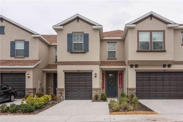 6623 Rocky Park Street, Tampa, FL 33625 (MLS #U8069236) :: Team Bohannon Keller Williams, Tampa Properties