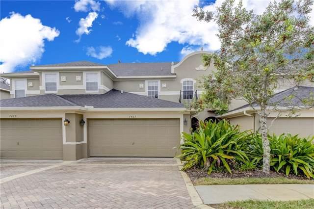 7467 Terrace River Drive, Temple Terrace, FL 33637 (MLS #U8069975) :: 54 Realty