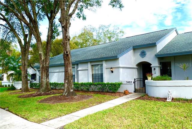3405 Killdeer Place, Palm Harbor, FL 34685 (MLS #U8070387) :: Zarghami Group