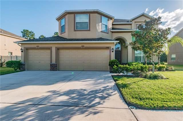13846 Crest Lake Drive, Hudson, FL 34669 (MLS #U8070401) :: 54 Realty