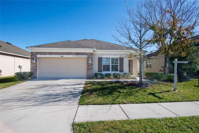 4310 Hawksley Place, Wesley Chapel, FL 33545 (MLS #U8070430) :: Team TLC | Mihara & Associates