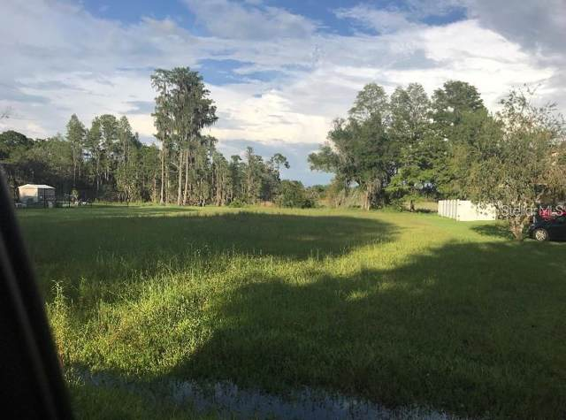 Lake Shore Dr, Land O Lakes, FL 34639 (MLS #U8070842) :: Griffin Group