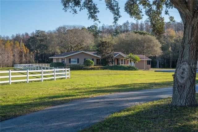 1001 E Lake Road S, Tarpon Springs, FL 34688 (MLS #U8070887) :: Armel Real Estate