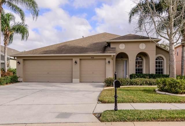 1850 Cardamon Drive, Trinity, FL 34655 (MLS #U8070958) :: Delgado Home Team at Keller Williams