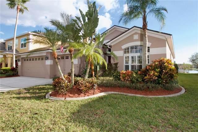 10124 Kingsbridge Avenue, Tampa, FL 33626 (MLS #U8071058) :: Team Bohannon Keller Williams, Tampa Properties