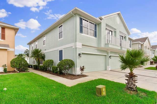 8636 Great Egret Trace, New Port Richey, FL 34653 (MLS #U8071178) :: Griffin Group