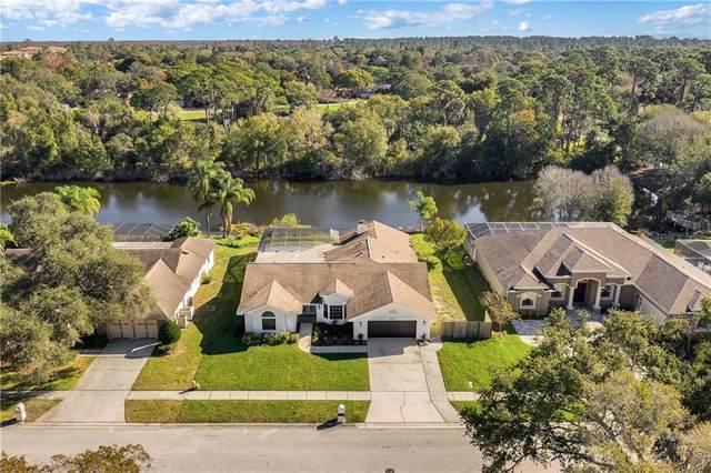 3287 Enisgrove Drive E, Palm Harbor, FL 34683 (MLS #U8071437) :: Cartwright Realty