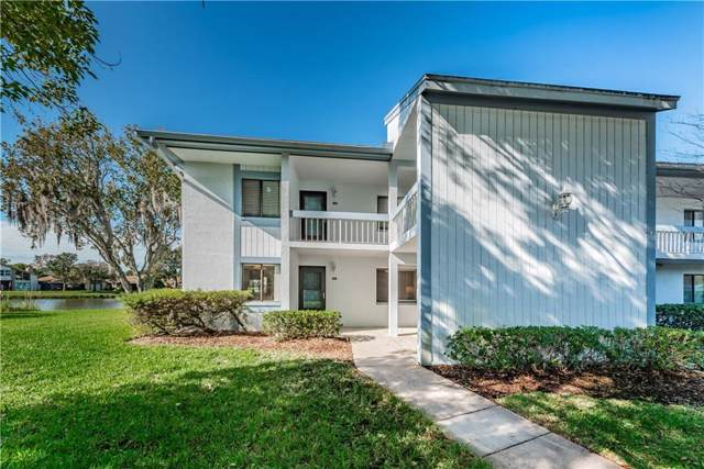 201 Nina Way #0, Oldsmar, FL 34677 (MLS #U8071468) :: Griffin Group