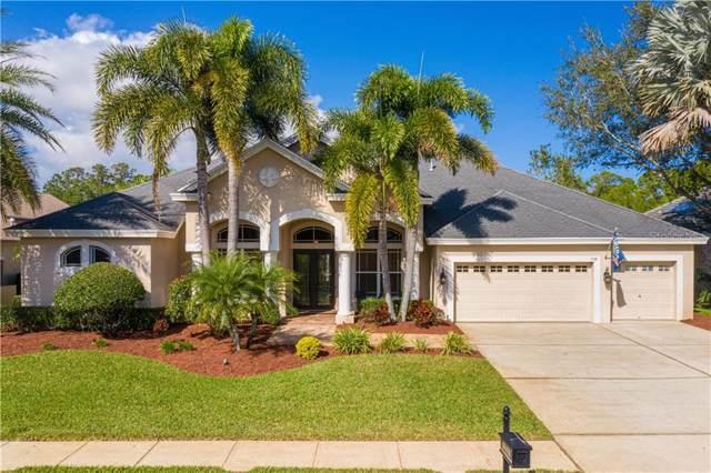 5148 Jewell Terrace, Palm Harbor, FL 34685 (MLS #U8071495) :: Team Borham at Keller Williams Realty