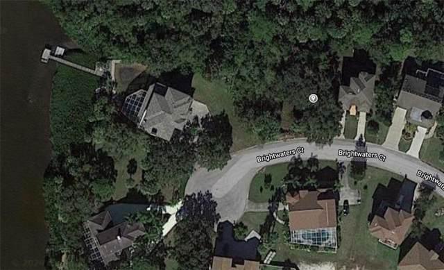 Lot 11 Brightwaters Court, New Port Richey, FL 34652 (MLS #U8071509) :: Team Buky