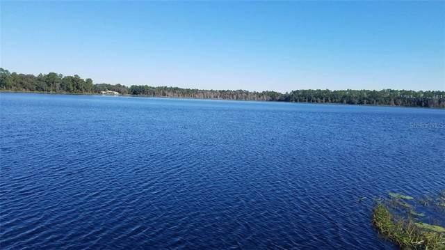 112 Susan Lake Shore Lane, Hawthorne, FL 32640 (MLS #U8071555) :: 54 Realty
