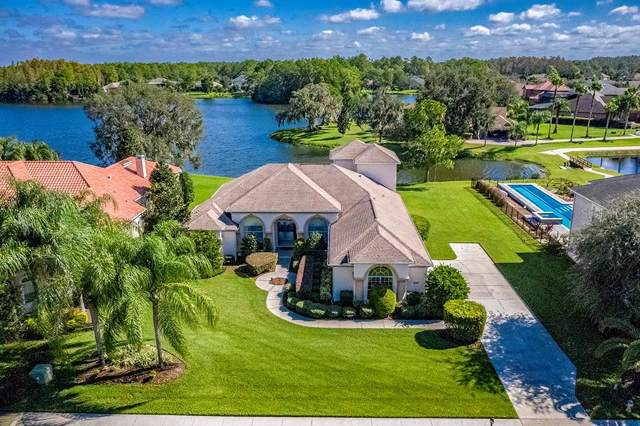 1548 Lake Polo Drive, Odessa, FL 33556 (MLS #U8071707) :: Team Bohannon Keller Williams, Tampa Properties