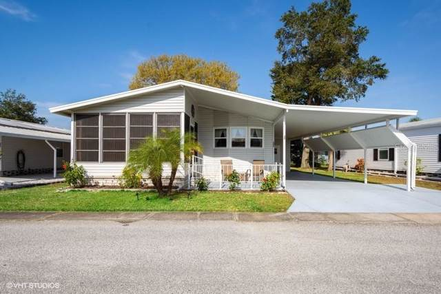 222 Dolphin Drive N, Oldsmar, FL 34677 (MLS #U8071782) :: Griffin Group