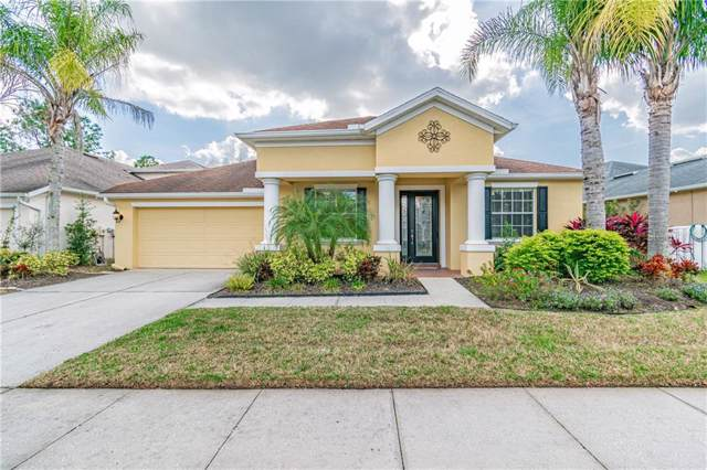 27136 Firebush Dr, Wesley Chapel, FL 33544 (MLS #U8071806) :: Griffin Group