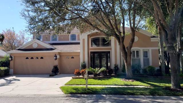 10203 Quails Landing Avenue, Tampa, FL 33647 (MLS #U8071838) :: Premier Home Experts