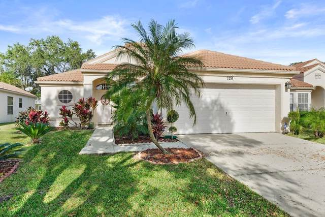 729 Lighthouse Drive, Tarpon Springs, FL 34689 (MLS #U8071897) :: Team Bohannon Keller Williams, Tampa Properties