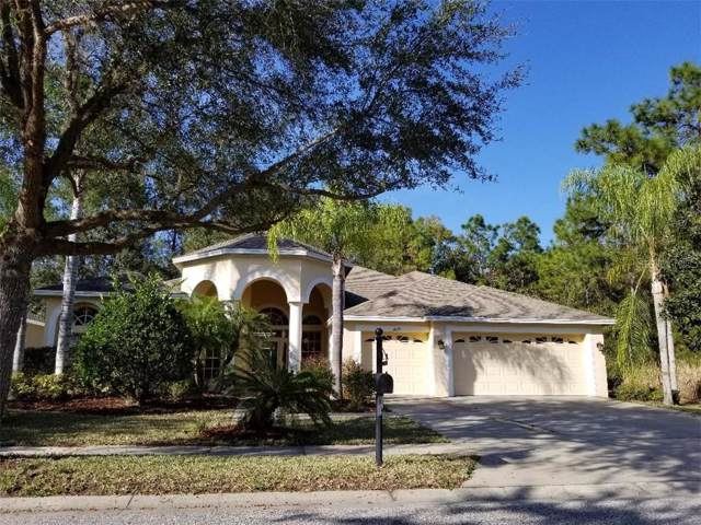 21229 Lake Talia Boulevard, Land O Lakes, FL 34638 (MLS #U8071950) :: Delgado Home Team at Keller Williams