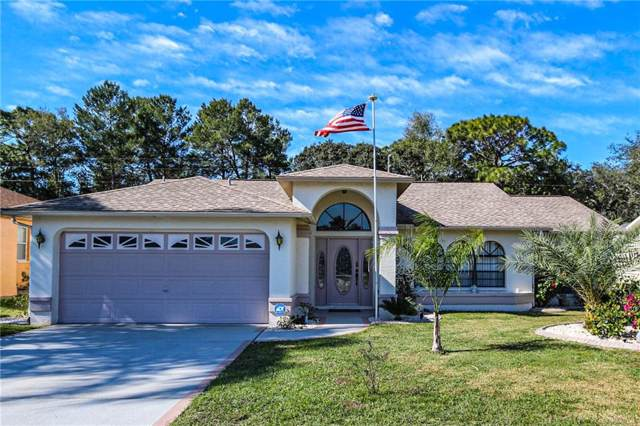 18801 Parade Road, Hudson, FL 34667 (MLS #U8071953) :: McConnell and Associates