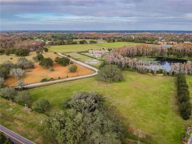 17413 Boy Scout Road, Odessa, FL 33556 (MLS #U8072055) :: Cartwright Realty