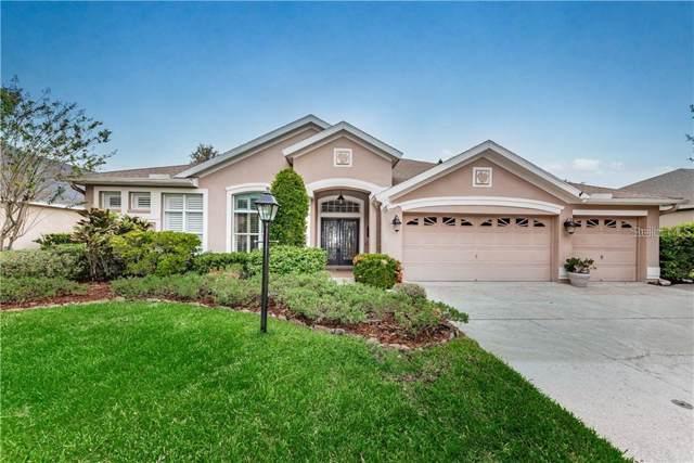10406 Greenhedges Drive, Tampa, FL 33626 (MLS #U8072100) :: Griffin Group