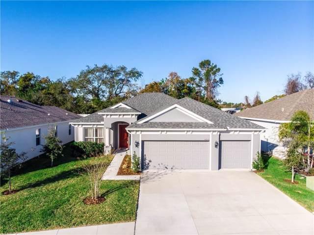 14633 Strathglass Drive, Hudson, FL 34667 (MLS #U8072238) :: Cartwright Realty