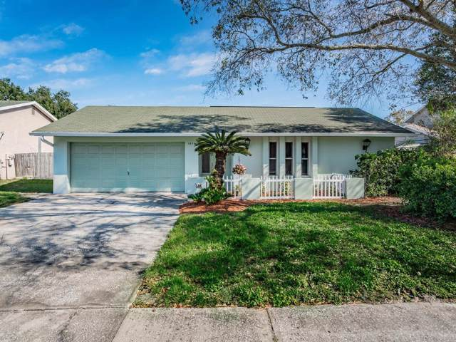 1979 Hastings Drive, Clearwater, FL 33763 (MLS #U8072303) :: Team Bohannon Keller Williams, Tampa Properties