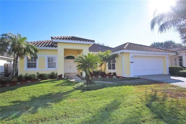 4816 Queen Palm Terrace NE, St Petersburg, FL 33703 (MLS #U8072488) :: Lockhart & Walseth Team, Realtors