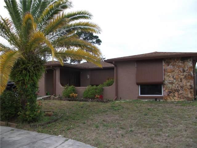 9921 Lake Chrise Lane, Port Richey, FL 34668 (MLS #U8072514) :: The Figueroa Team