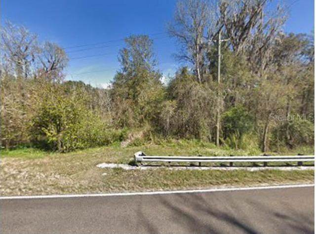 33809 St. Joe Road, Dade City, FL 33525 (MLS #U8072642) :: Heart & Home Group