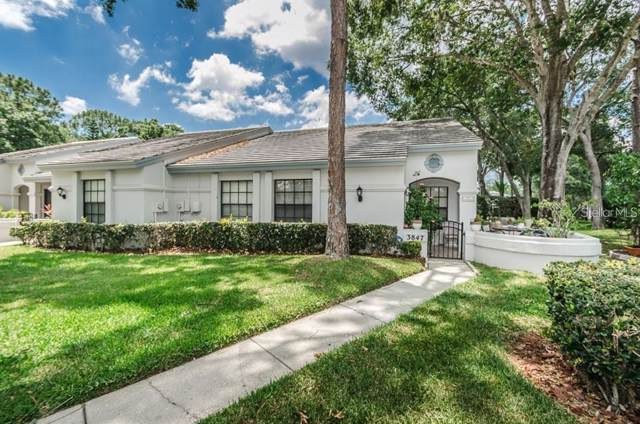 3847 Goldfinch Court, Palm Harbor, FL 34685 (MLS #U8072673) :: Zarghami Group